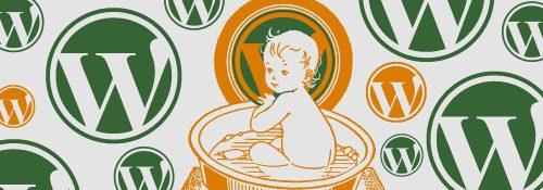 Wordpress Joomla CMS – kinderleicht zu bedienen?