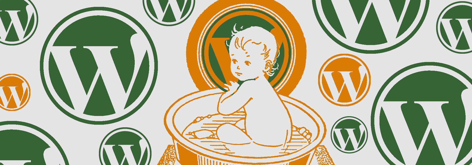 Wordpress CMS kinderleicht zu bedienen