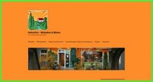 Homepage - Webseite für Bioladen alt
