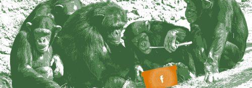(M)eine super einfache Facebook-Marketingstrategie, die funktioniert
