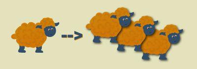 Wordpress installation klonen, migrieren oder umziehen