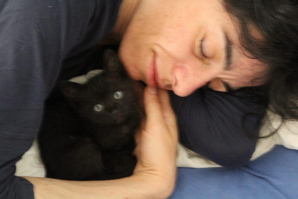 Katzenbilder sind als Marketingstrategie für Introvertierte und Hochsensible interessant.
