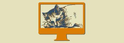 Webdesign mit Katzen
