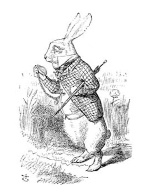 Das weiße Kaninchen - The White Rabbit